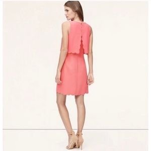 NWT LOFT #310 Strawberry Ice Scalloped Dress